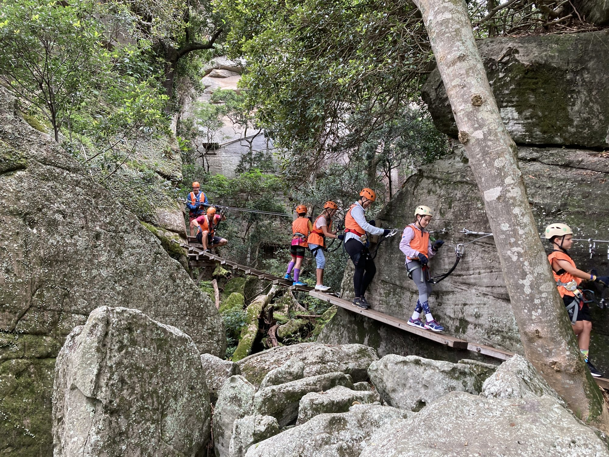 Family fun amongst the tree tops! | Shoalhaven Region Activity Wrap Up