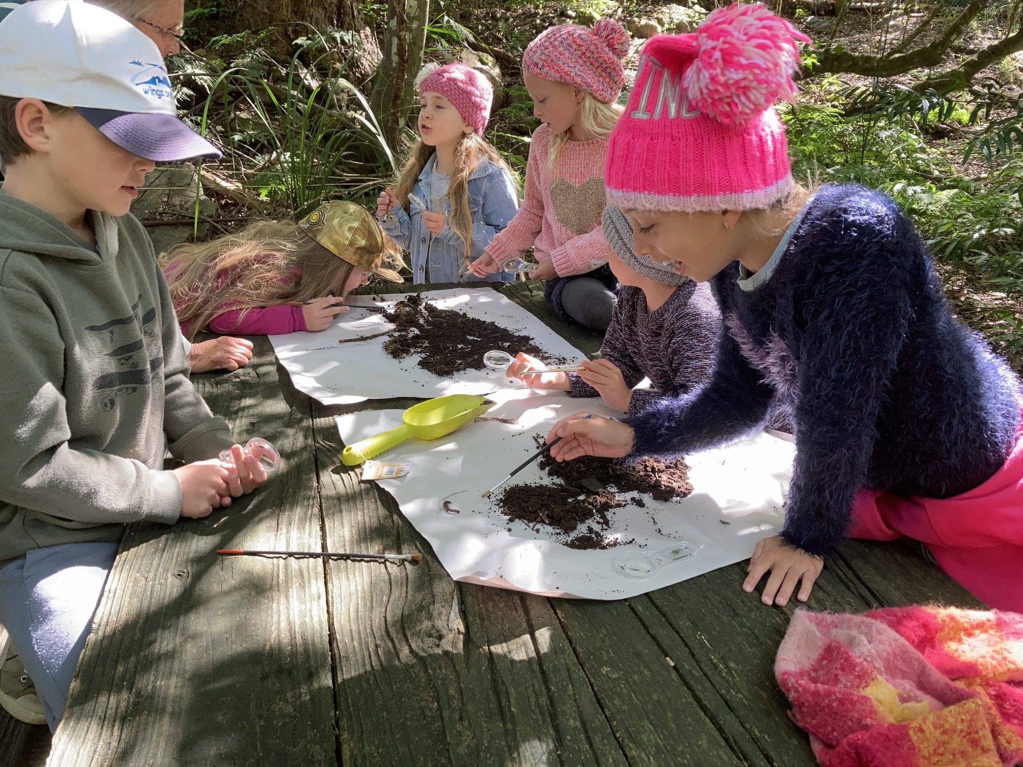 On the trail with the Junior Ranger Bush Detectives! | Illawarra Region Activity Wrap Up