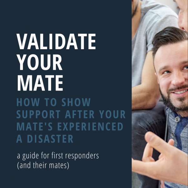 Validate your mate - PDF Guide
